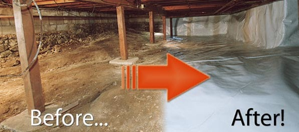 crawl space mold removal in Tacoma