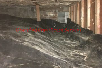Crawl space Cleaning Bellevue
