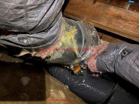 Crawl space cleaning Samammish WA- (13)