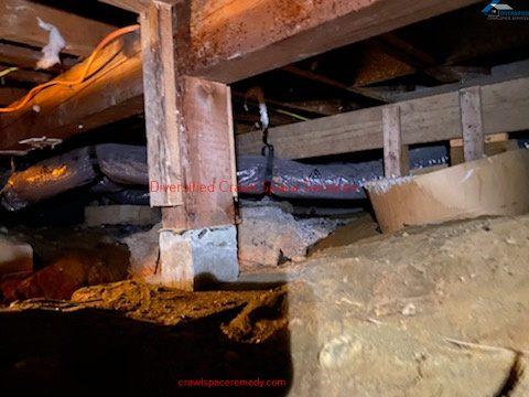Crawl space cleaning Samammish WA- (9)